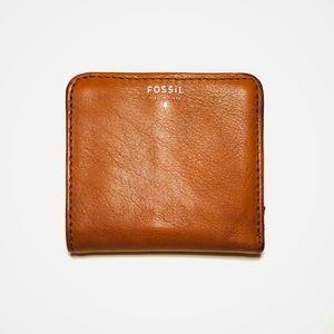 🗝 Fossil Wallet